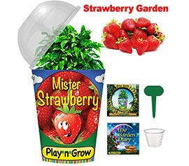 Mr. Strawberry